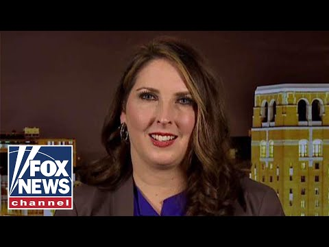 Ronna McDaniel: Trump has common sense solutions on immigration