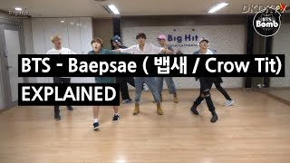 BTS - BAEPSAE (뱁새 / Crow Tit) Explained by a Korean