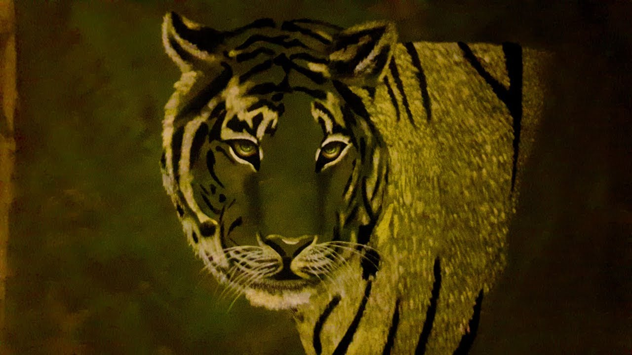 White Tiger... acrylic paint on canvas by Noelia Garcia ...