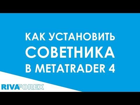 Как установить советника в Metatrader 4