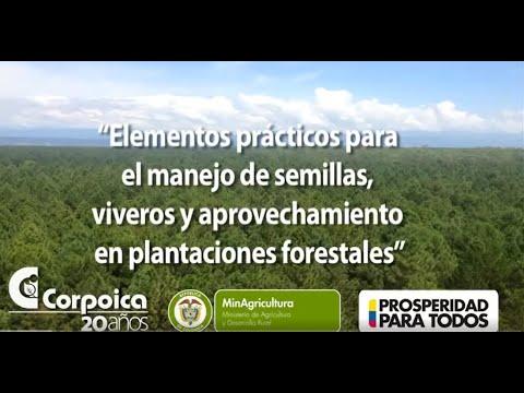 Elementos practicos para el manejo de semillas viveros y for Manejo de viveros forestales