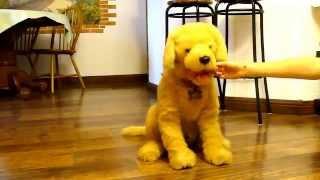 """Интерактивная собака """"Умный щенок Бисквит"""""""