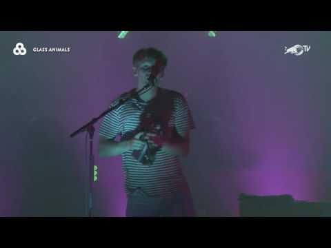 Glass Animals Live at Bonnaroo Music and Arts Festival 2017