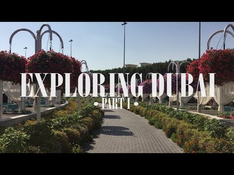 KELILING DUBAI • PART 1 : Miracle Garden, Red Dunes Safari, BBQ Dinner in The Desert!
