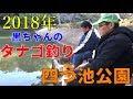 【タナゴ釣り】2018年黒ちゃんのタナゴ釣り 四ツ池公園