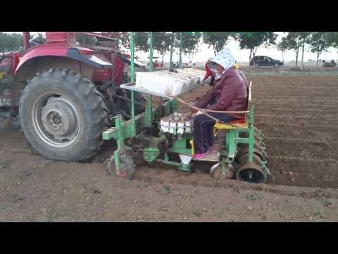 Trailing vegetable transplanter