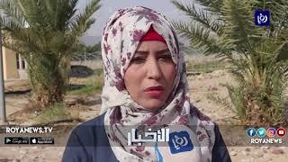 العقبة .. شكاوى من ارتفاع ملوحة المياه في قطر ورحمة والشركة تنفي - (12-1-2019)