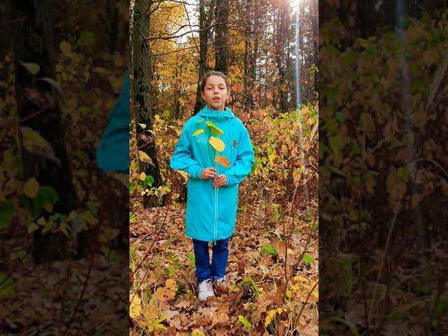 Изображение предпросмотра прочтения – АринаГугняева читает произведение «Славная осень» Н.А.Некрасова