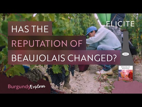 What Is Beaujolais Wine? Breaking Down The Region