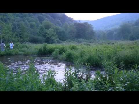 Haywood Community College, Fish and Wildlife Management, Summer 2014