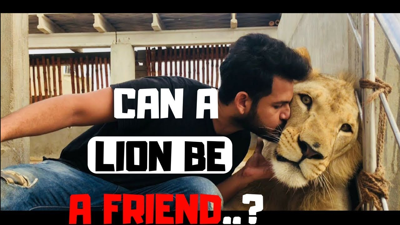 When Wild Animal Becomes Friend | VLog | Azlan Shah