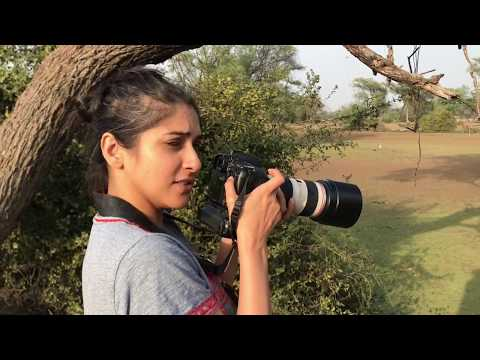 Delhi Girl Travels to see Birds of Bharatpur