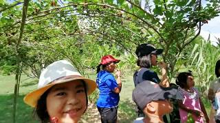 Baixar Cultural Camp in English in Srakaew VTR1