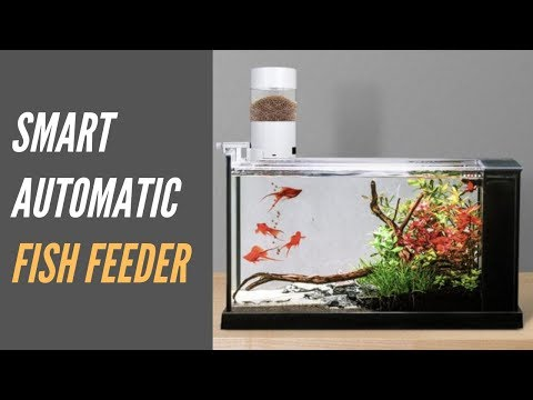 Easily-installed Smart Automatic Fish Feeder For Fish Tank