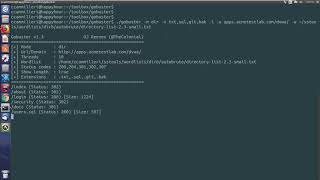 How to directory brute with gobuster