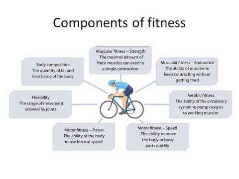 Components of Fitness  Principles of Exercise - YouTube - components of fitness
