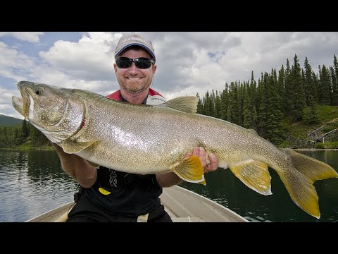 Catching Giant BC Lake Trout | Fish'n Canada