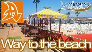 Lonicera Resort and Spa 5* Обзор территории отеля. Дорога на пляж. Hotel territory. Way to the beach