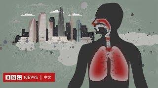 韓國空氣污染來襲 責任都在中國嗎?- BBC News 中文 |事實核查|空氣污染|