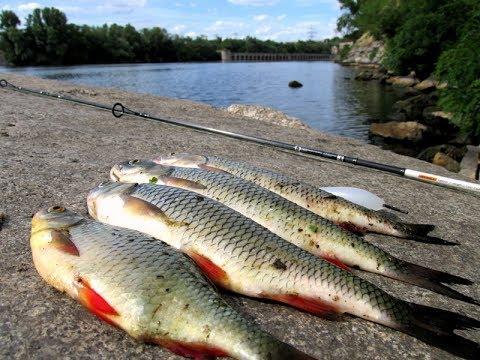 Супер рыбалка в