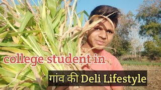 My Lifestyle in My Village -