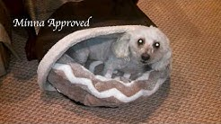 BedHug Burrow Blanket For Dogs Review