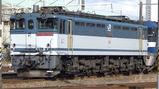 JR貨物 岡山機関区にて(EF65 PF & EF210 & EF64)【岡山機関区】