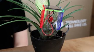 Make with DIY Thirsty Plant Kit Thumbnail