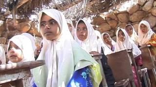 Yemen - Socotra / WISHES