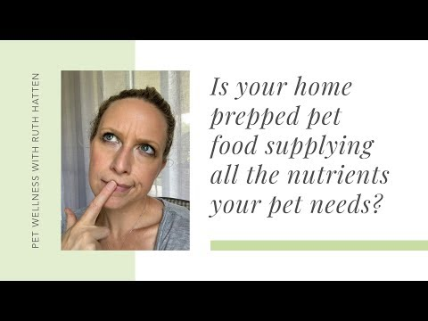 Is Your Home Prepped Pet Food Supplying All the Nutrients Your Pet Needs?