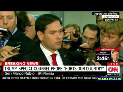 """Marco Rubio """"We're A Nation Of Laws! And That Is Not A Criticism Of The President!"""""""