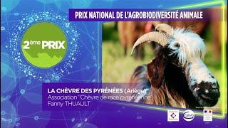 2ème prix 2019 pour le [Prix National Agrobiodiversité Animale]