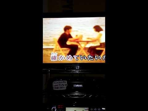 沢田知加子 day by day