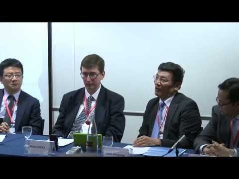 LSE SU China Development Forum 2014 - Power to Empower: China's Media Revolution