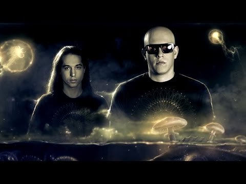 Becoming Infected Mushroom – In-Depth Interview