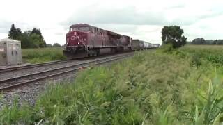 Cp 241 Cp 8781 Cp 8511 at Vanneck Rd August 20 2018