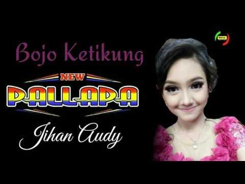 Bojo Ketikung - Jihan Audy - New Pallapa