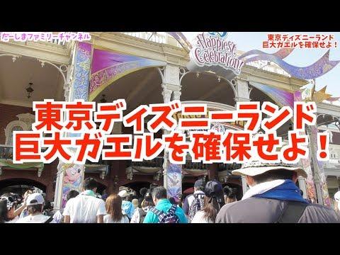 だーしま探検隊!東京ディズニーランドに巨大カエル出没!?確保しに行ってきた!