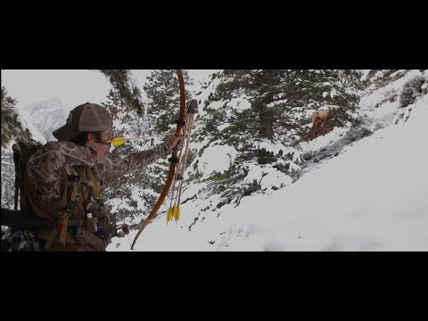 Bow Hunting Elk With Recurve Self Bow - Clay Hayes On Public Land