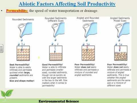 Abiotic Factors of Soil Fertility