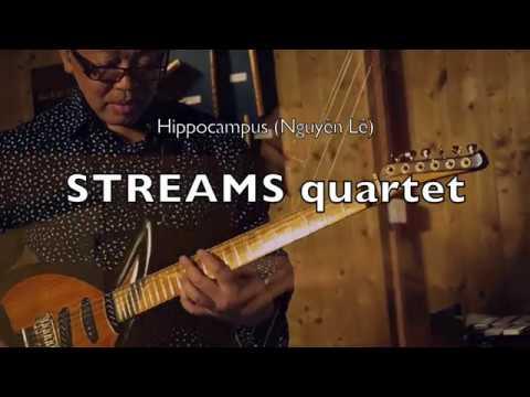 Hippocampus | Nguyên Lê | Streams quartet