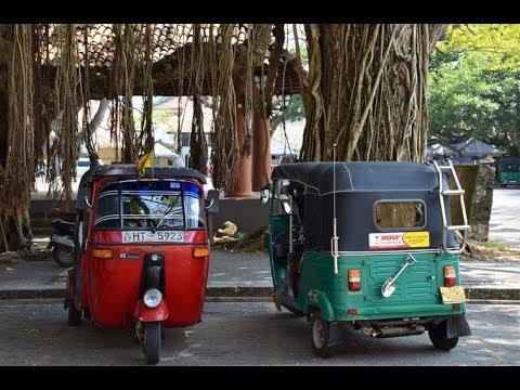 Stage médical au Sri Lanka: Alimentation, transport et monaie
