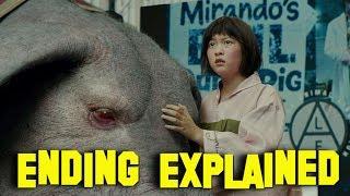 Okja Ending Explained | Satirical Vegans