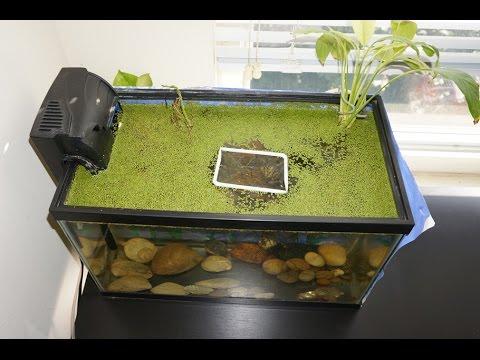 Fish Tank Floating Feeding Frame