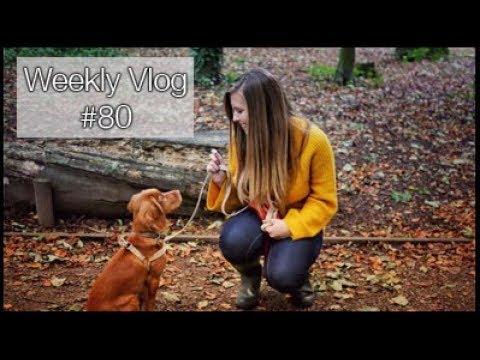I GOT A TATTOO!!! | xameliax Weekly Vlog #80