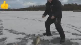 Приколы на рыбалке продолжаются