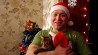 Новогоднее поздравление + бонус рецепт Креветки в кляре