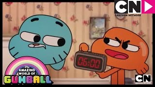 Stinging   The Amazing World of Gumball   Cartoon Network