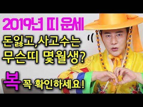 ▶2019년 띠별 신년운세 ▶돈잃고 사고나는 사람은 ▶무슨띠 몇월생? 확인 필~