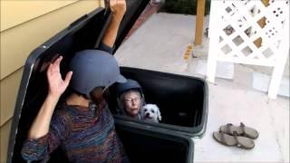 Trash Can Storm Shelter